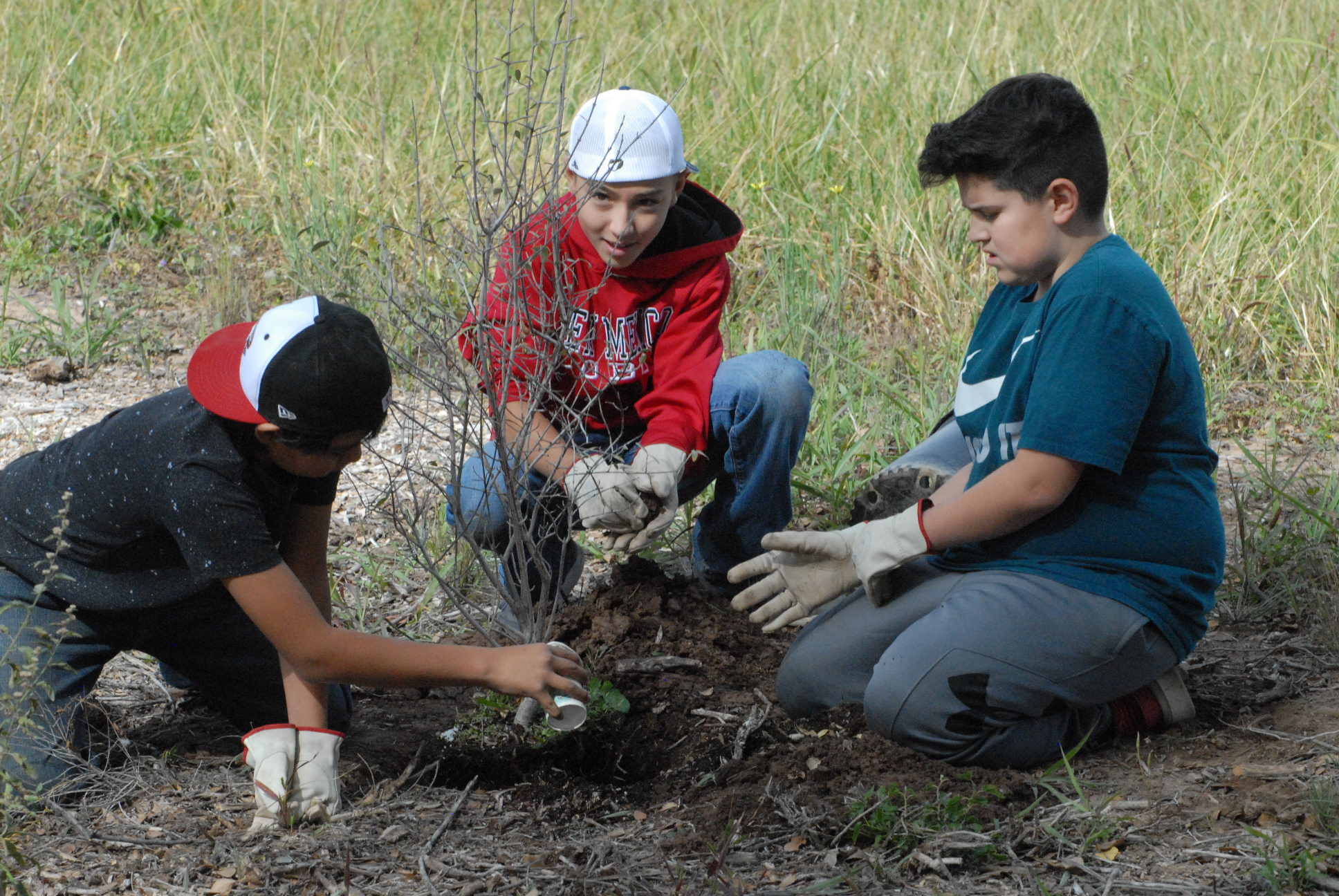 Three children planting a tree.