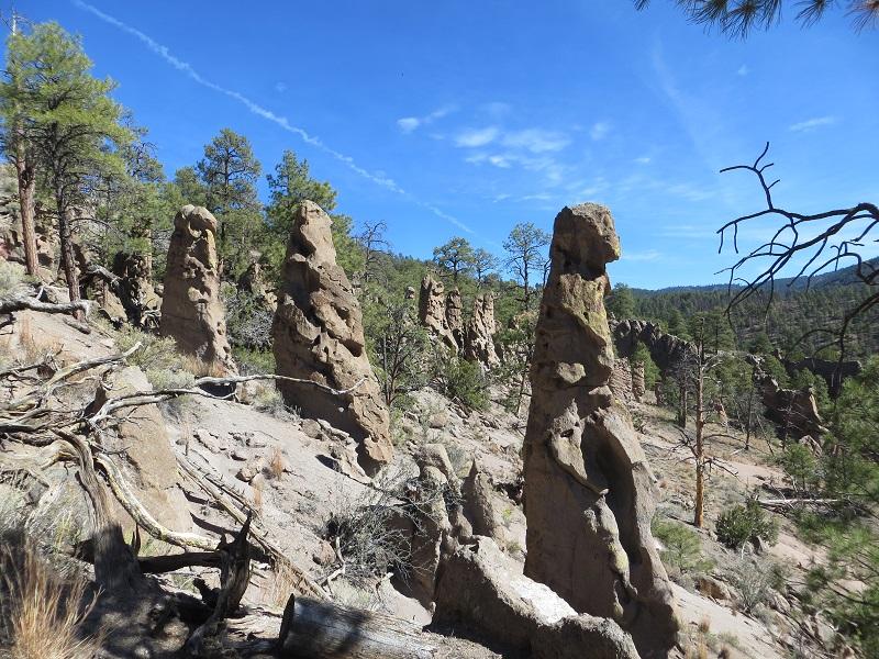 Rocks along a hiking trail.