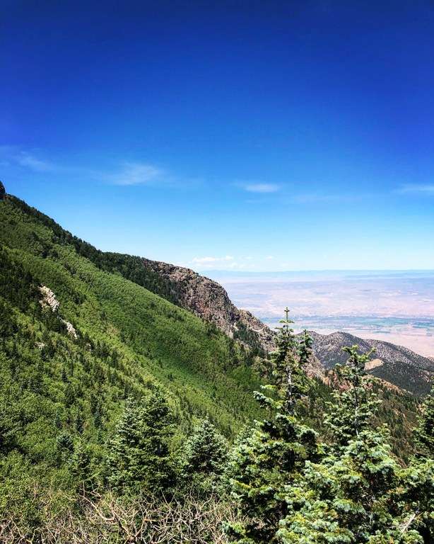 Albuquerque as seen from the top of a trail in the Sandia mountains.