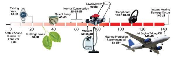 A chart describing different decibel levels of common noises.