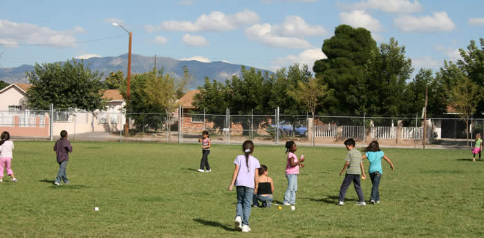 Summer Recreation in the Park