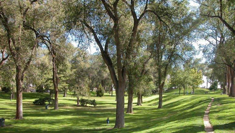 Roosevelt Park in the Daytime