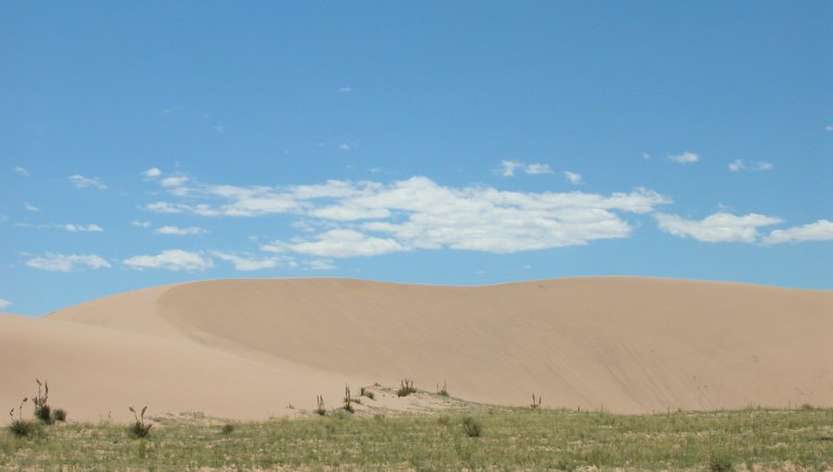 Sand Dunes Tile