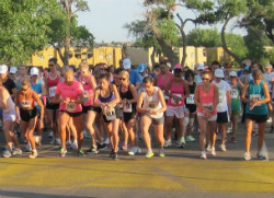 Image of the Run for the Zoo annual event.