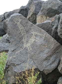 A rock etching at Petroglyph National Monument in Albuquerque, NM.
