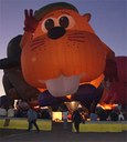 Critter balloon