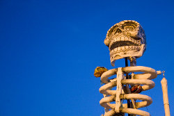 Enjoy the fun of Halloween and Day of the Dead in Albuquerque.