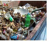 trash2.jpg