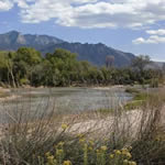 The Rio Grande River runs through the heart of Abq and is lined by a cottonwood bosque; Sandia Mountains are east of the river.