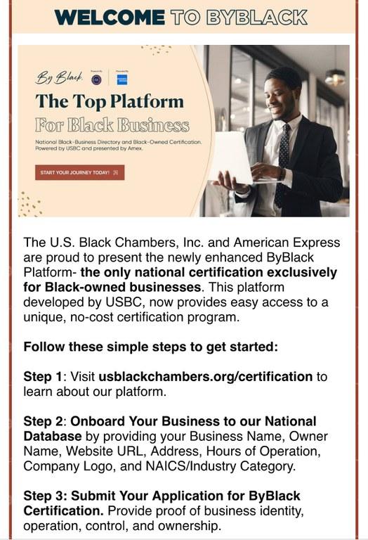 US Black Chamber.jpg