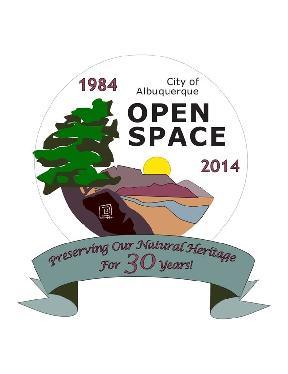 Open Space Anniversary Logo