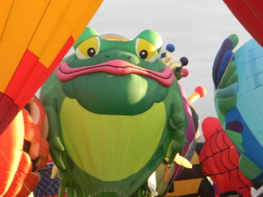 Frog Balloon from Summer 2014