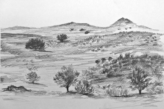 Trees Rocks Dirt image
