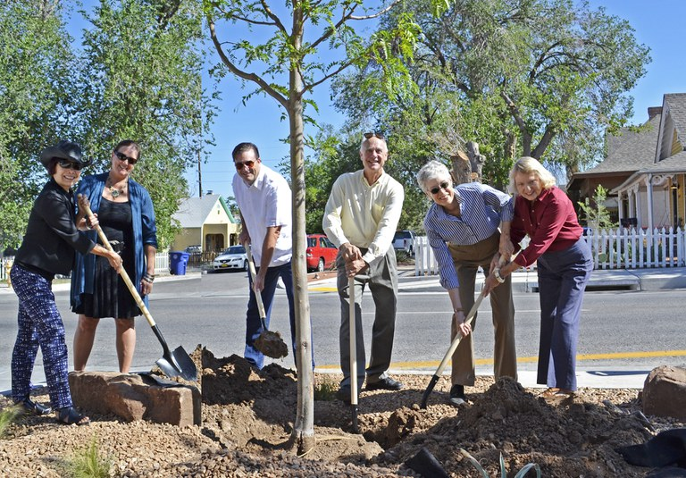 Lead and Coal Tree Planting