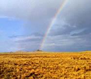 Rainbow over the petroglyph