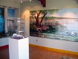 Open Space Visitor Center Gallery 1