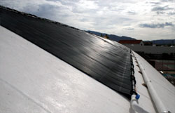 Solar panels supply heat and save money