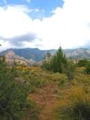 Elena Gallegos Picnic Area 2