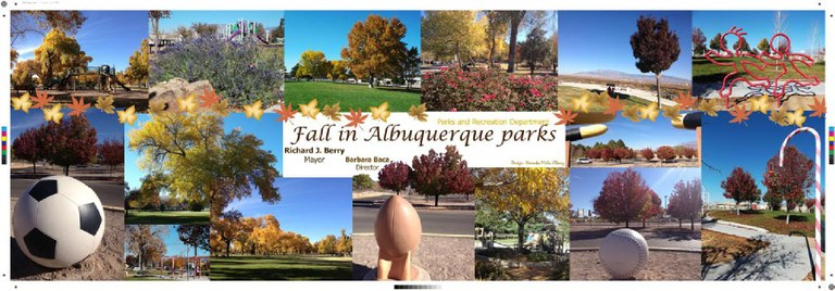 Fall in Parks Pic Large