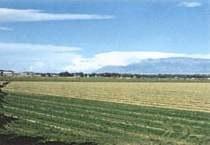 Hubbell Oxbow Farm
