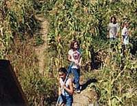 Los Poblanos Fields