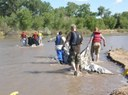 National River Cleanup1