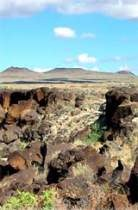 Volcanoe Petroglyph