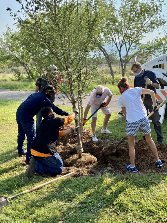 Dakota Tree Project at Phil Chacon Park 2