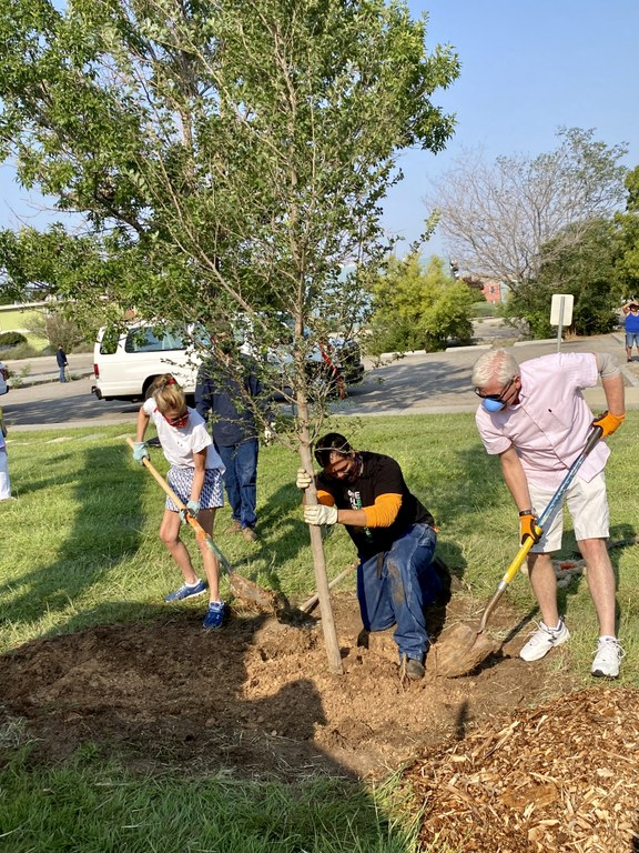 Dakota Tree Project at Phil Chacon Park 3