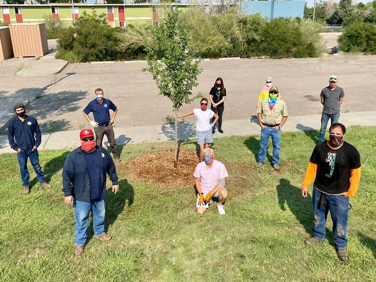Dakota Tree Project at Phil Chacon Park 1
