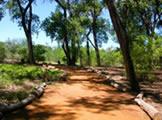 Paseo Del Bosque Trail Rio Bravo