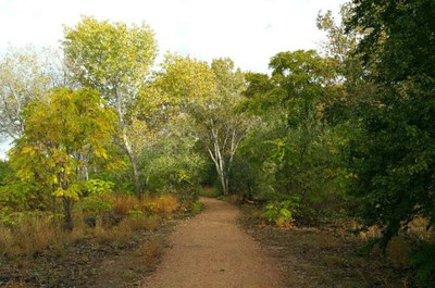Discover and explore the beautiful outdoor areas of Albuquerque.