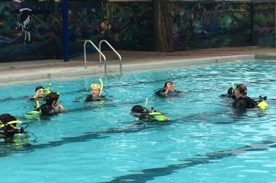 caption: Enjoy swimming at Albuquerque's public pools.