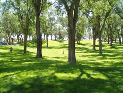 Albuquerque's City parks are open to everyone.