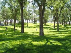 Albuquerque s city parks are open to everyone