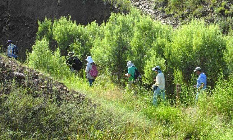 Trails Arroyo Loop Milne
