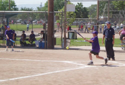 Softball — City of Albuquerque
