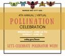 City of Albuquerque, Partners Present Virtual Burque City Pollination Celebration