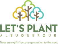 City Tree Planting Alliance to Boost Albuquerque Urban Forest