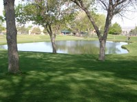 Proposed Municipal Golf Course Greens Fee Increase