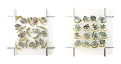 """At the Gallery through 2/23: """"Connecting the Modern to the Natural World"""""""