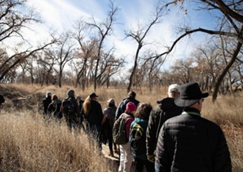 Bosque Wild! Guided Hikes