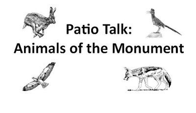 Patio Talk: Animals of the Monument