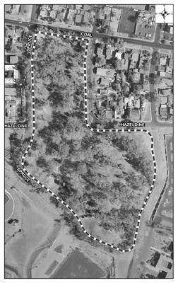Roosevelt Park Satellite Image
