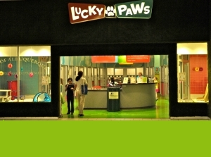 Lucky Paws Entrance