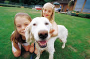 Yellow lab and girls