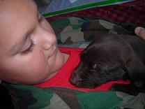 Holiday Adoptathon 2009