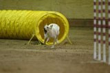 Maggie blasts through a tunnel