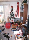 Callee the Cat at Christmas