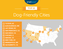 Albuquerque Ranks as #2 Most Dog-Friendly City in America
